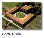 Corte Tusini  c/t